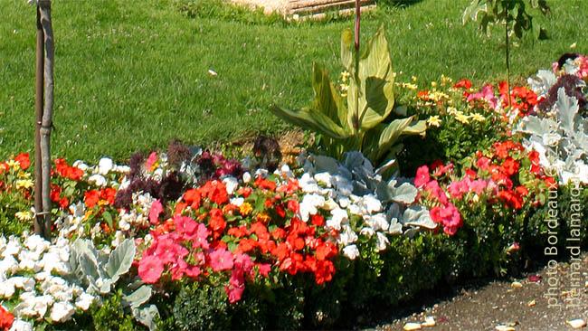 Un jardin pour tous les bordelais naissance et vie for Jardin pour tous